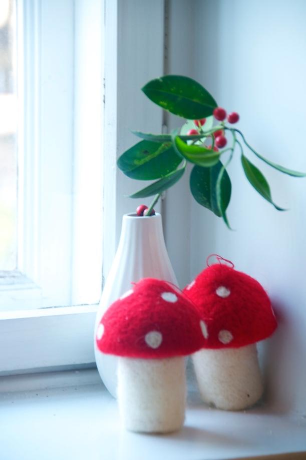 rød mistelten svampe